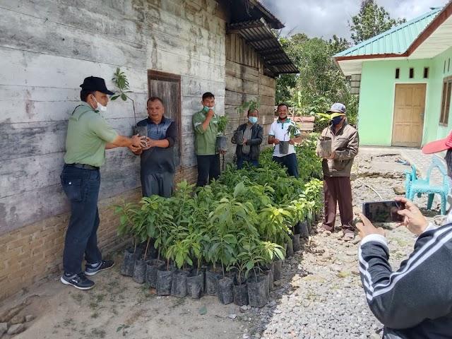 TPL Serahkan 450 Bibit Alpukat kepada Masyarakat Dusun Lobu Nauli