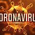 What is Coronavirus ?