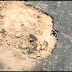 জলাবাসা-কাঞ্চনপুর-পূর্ব ধর্মটিলা সড়ক নির্মাণে গাফিলতি ও নিম্নমানের কাজ