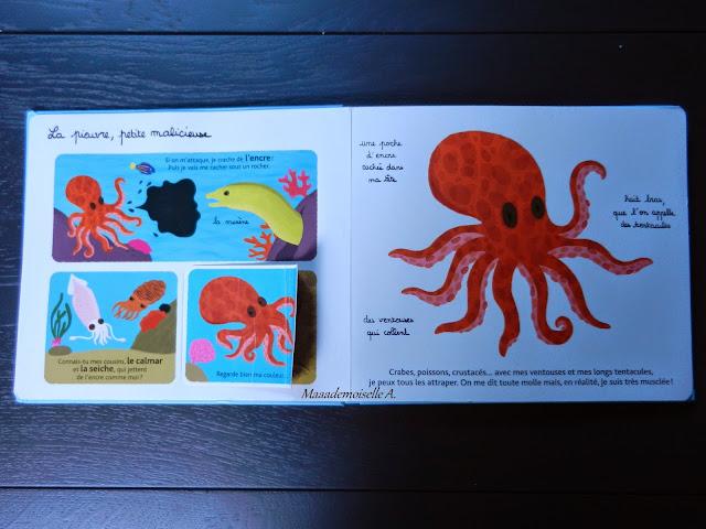 Mes animaux des mers à toucher (Présentation & Avis)