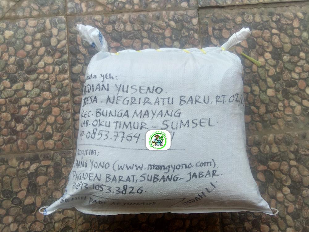 Benih Padi yang dibeli   ARDIAN YUSENO OKU Timur, Sumsel.   (Setelah packing karung).