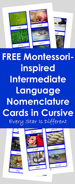 Free Cursive Montessori-inspired Intermediate Language Nomenclature Cards