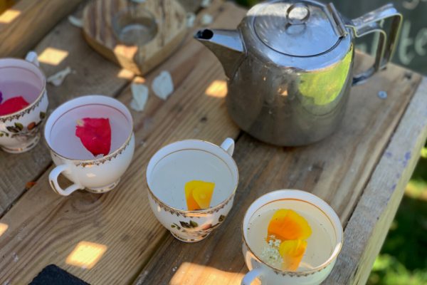 Using the curiosity approach at home - real china teacups for use in play
