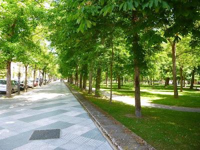 Lindo parque verde natural para passear