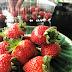 strawberry untuk kek