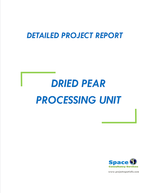 Project Report on Dried Pear Processing Unit