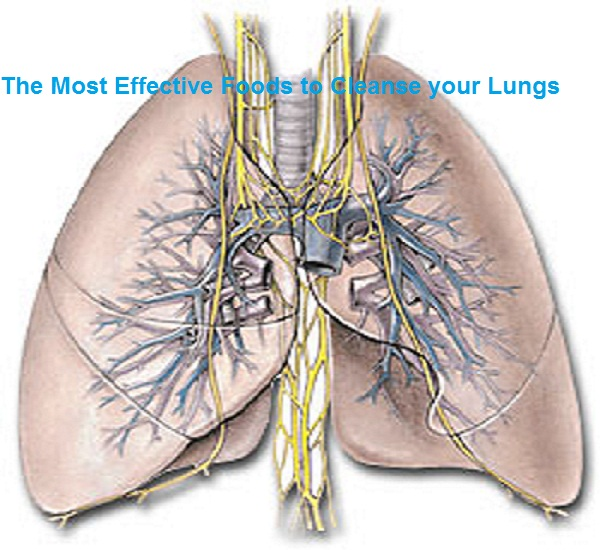 The Most Effective Foods to Cleanse your Lungs