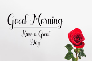 Good Morning Royal Images Download for Whatsapp Facebook33