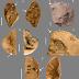 Los neandertales utilizaban resina para pegar sus herramientas de piedra a mangos de madera o hueso