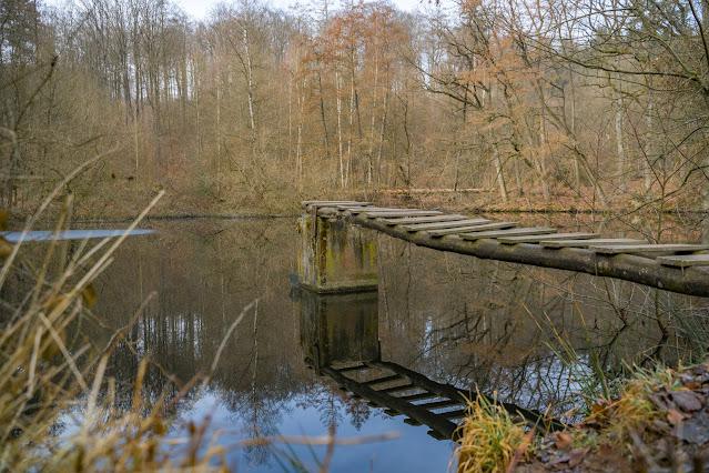 Schächerbachtour | ExtraTour Vogelsberg | Wandern Homberg (Ohm) | Wanderung in Hessen 13