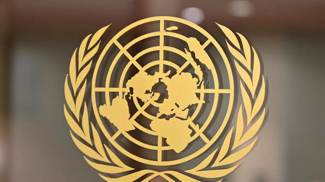 دورات الأمم المتحدة المجانية عبر الإنترنت 2020 مع شهادات مجانية