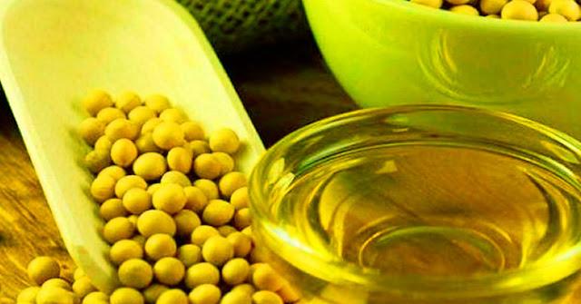 SALUD: La grasa extraída de la soya es rica en nutrientes que mejoran la función cardiovascular.