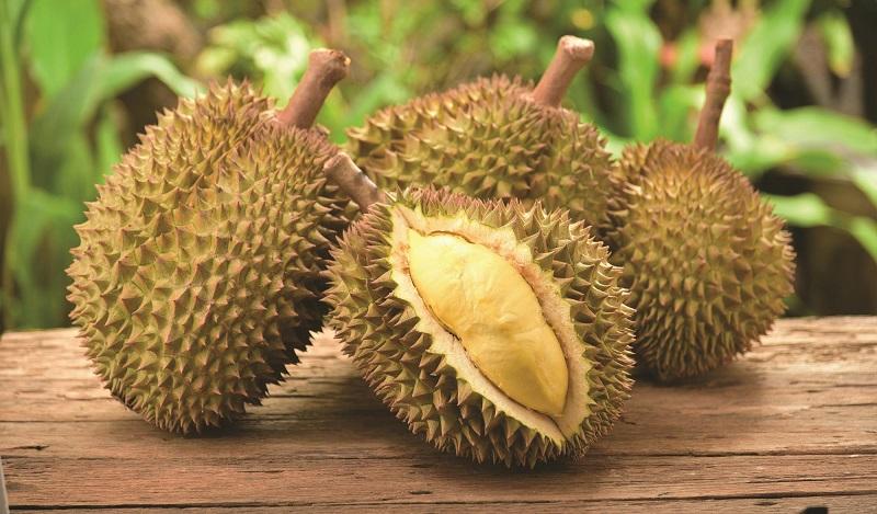 9 Benefícios do Durian (Durião) à Saúde