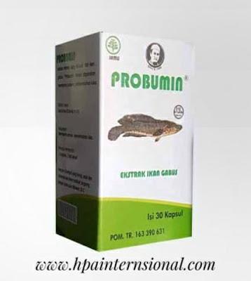 http://www.hpainternasional.com/2020/03/berbagai-macam-tanaman-herbal-dan.html