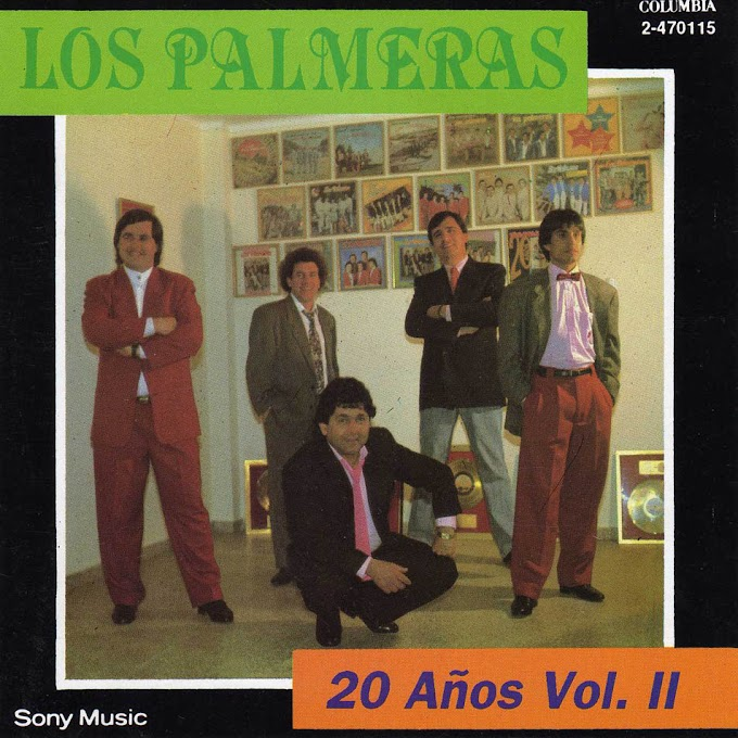 20 AÑOS VOLUMEN 2 (1992) - LOS PALMERAS