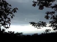 Menguak Surga Tersembunyi di Kecamatan Tlogowungu Pati