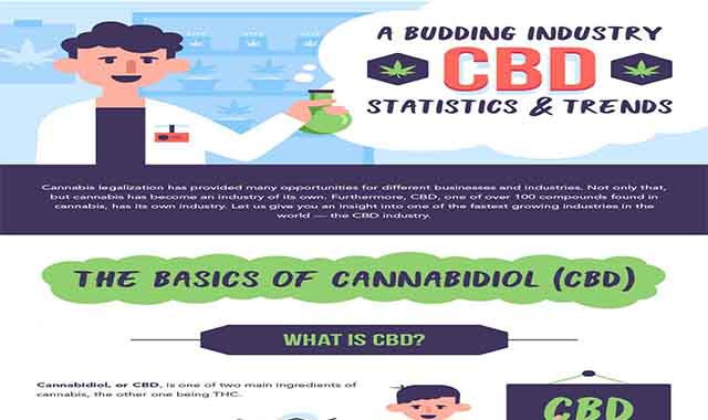 A Budding Industry: CBD Statistics & Trends #infographic