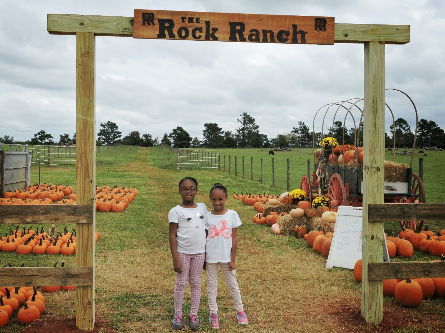 The Rock Ranch Review Recap #TheRockRanch via www.productreviewmom.com