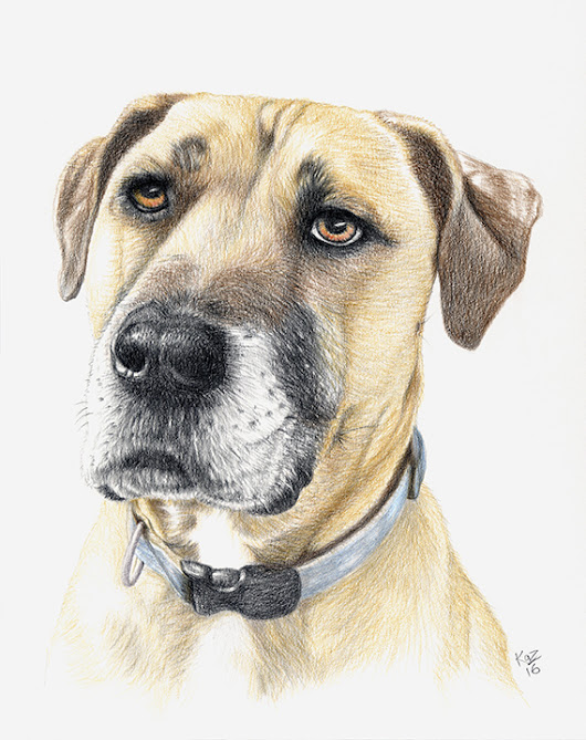 Pencil Portrait of Handsome Hunter