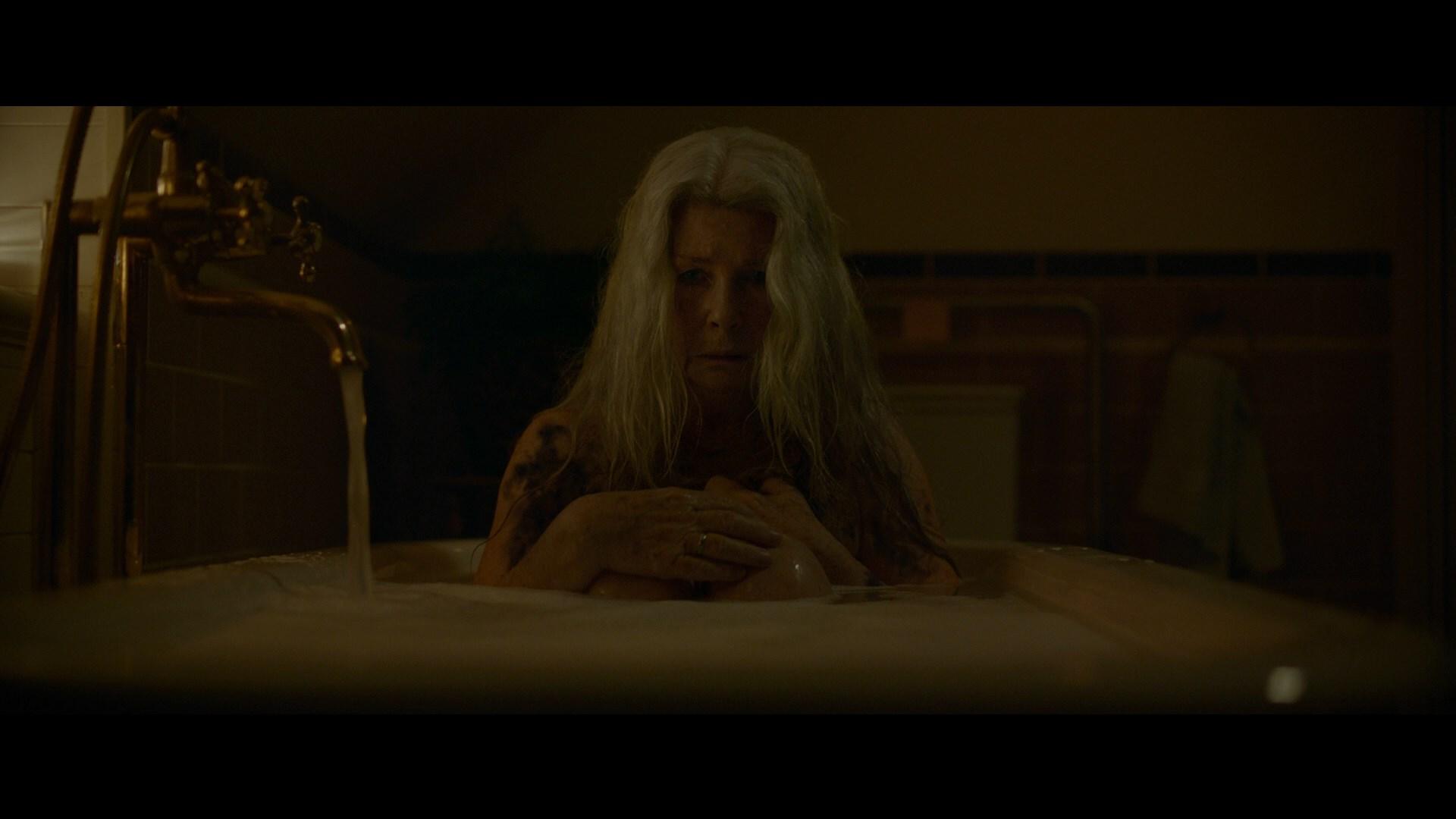 Relic: Herencia Maldita (2020) 1080p Remux Latino