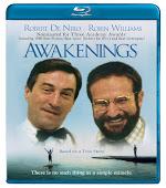 Uyanışlar | Awakenings | 1990 | BluRay | 1080p | x264 | AAC | DUAL