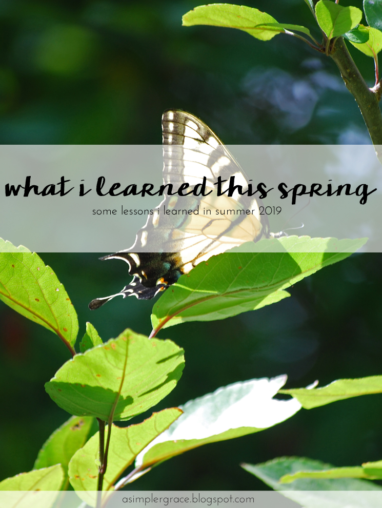 Today I'm sharing the lessons I learned this summer. #whatilearned