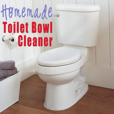 Homemade Toilet Bowl Cleaner & All Purpose Cleaning Spray ...