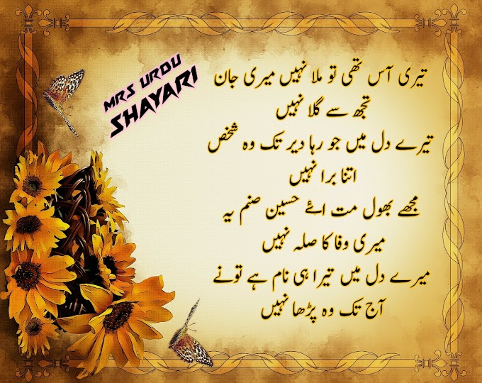 Sad Shayari,sad shayari urdu mein  sad urdu shayari on life  urdu sad shayari two lines  sad urdu shayari in hindi  urdu shayari love  best urdu shayari  urdu shayari in urdu  shayari in urdu sad love