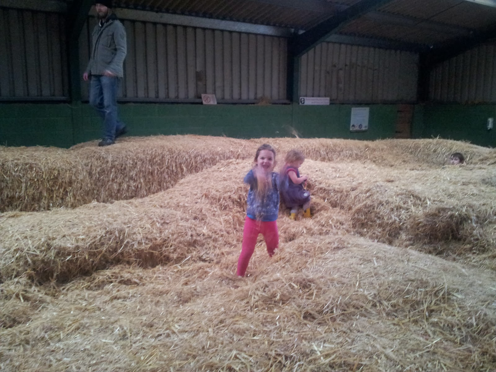 , A  Wild Winters Day at Manor Park 2014 #Family Frolics #CountryKids