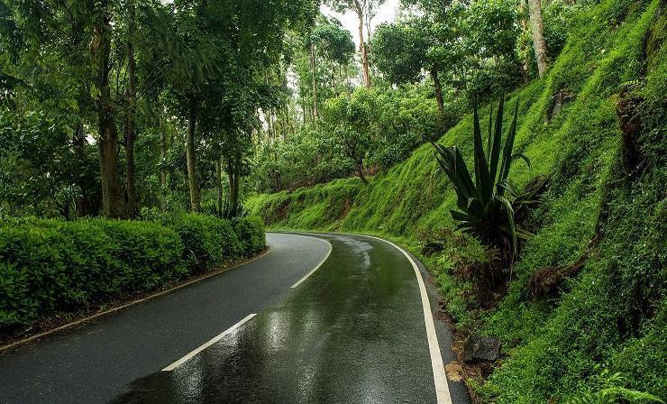 Tamilnadu Tourism: 32-Km Loop Road, Yercaud