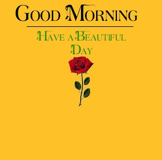 Good Morning Royal Images Download for Whatsapp Facebook5