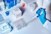 DEPORTES TOLIMA no tendrá que repetir pruebas PCR hechas al plantel: Así lo dijo médico de la FCF