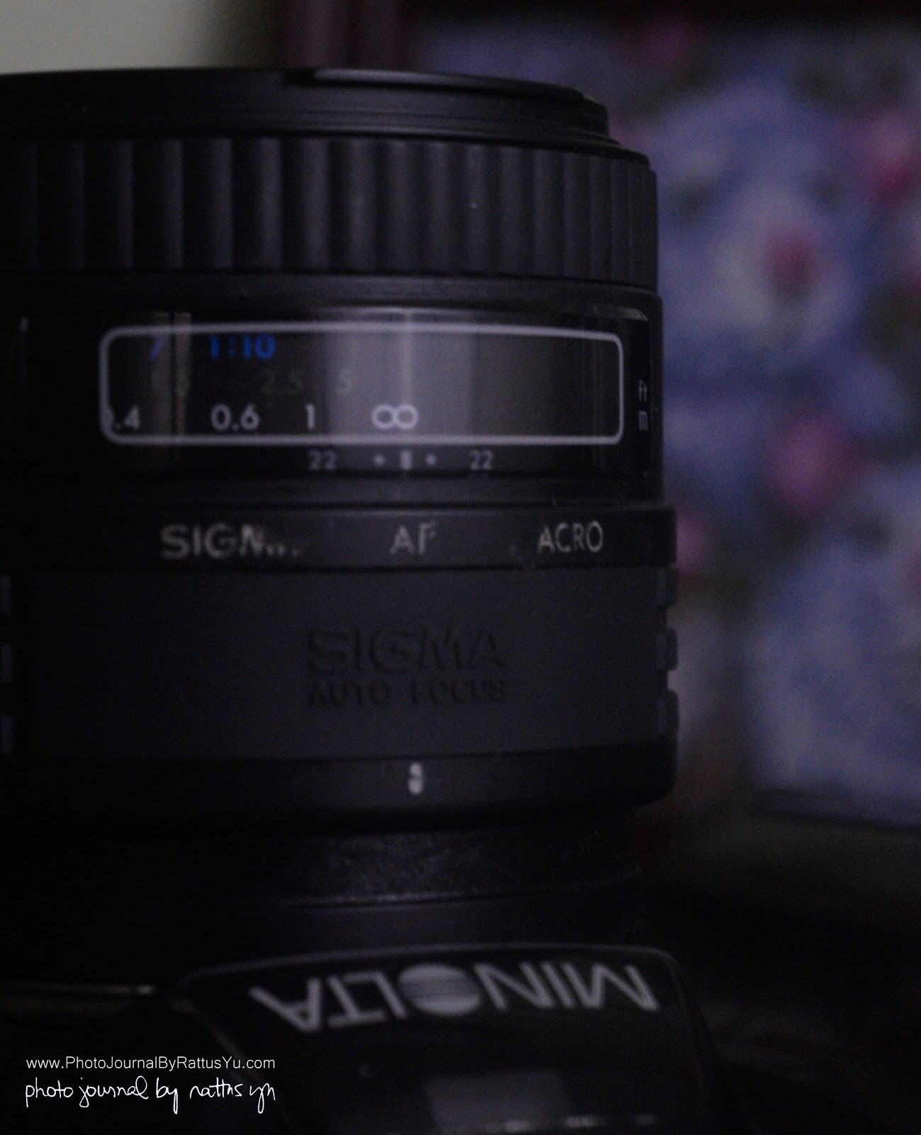 Sigma AF 50mm f/2.8 Macro in Minolta/Sony A Mount