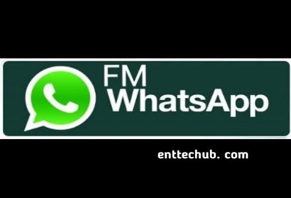 Fm Whatsapp Pro V8