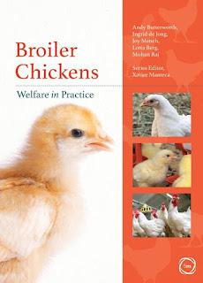 Broiler Chickens Welfare in Practice