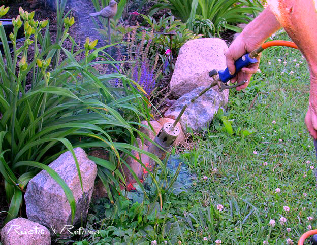 Top ten gardening tips and chores to do that will get your garden off to a great start every Spring.