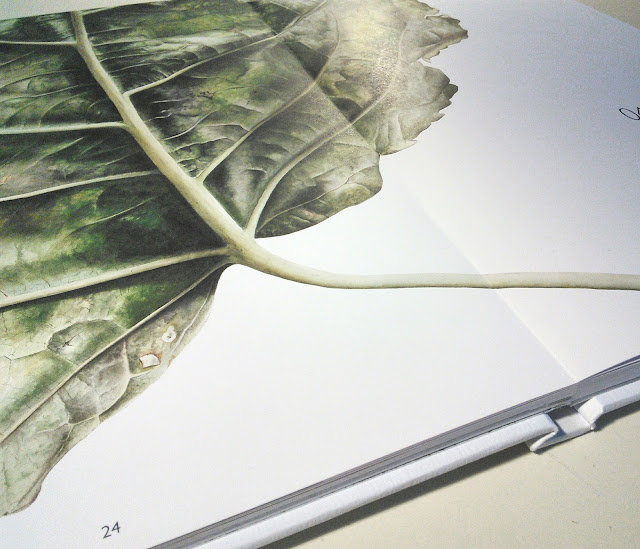 Leafscape botanical art book by Inky Leaves