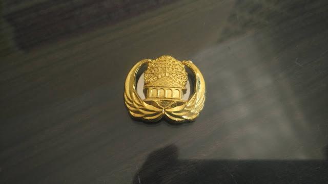Pin Korpri