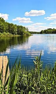 best beautiful nature image