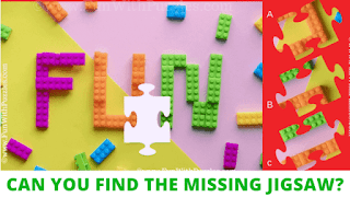Jigsaw Puzzles: Can you find the missing Jigsaw?