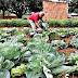 Governo MS emite mais de 120 autorizações de ocupação em 2020 e garante segurança a produtores familiares