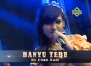 Lirik Lagu Banyu Tebu - Jihan Audy