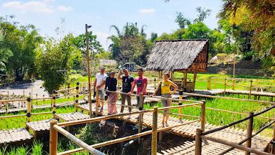 Sawah-sawah di sekitar Dusun Bambu