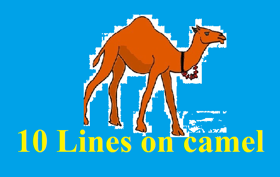 10 Lines on Camel in Hindi