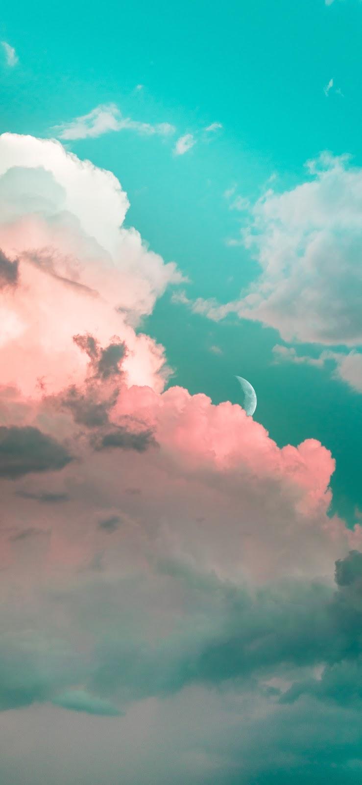 In the night sky (iPhone X)