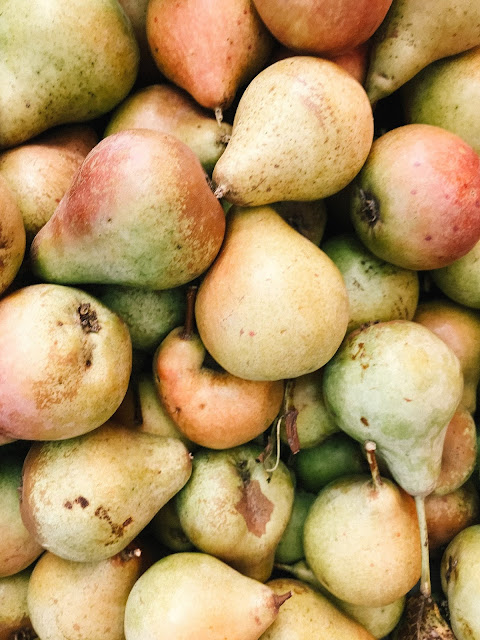 Pears nutrition facts calories and Health Benefits