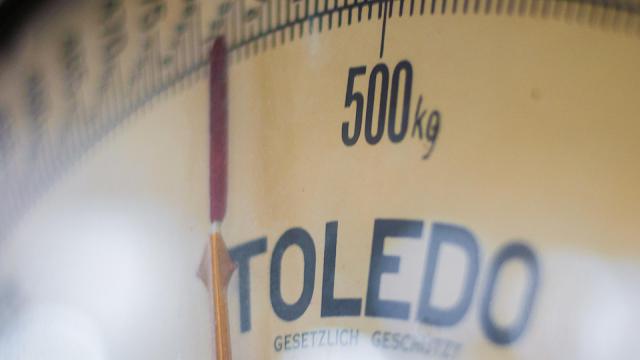 智能體脂磅選購 2020:量度脂肪、肌肉、水份、骨頭、重量等數據