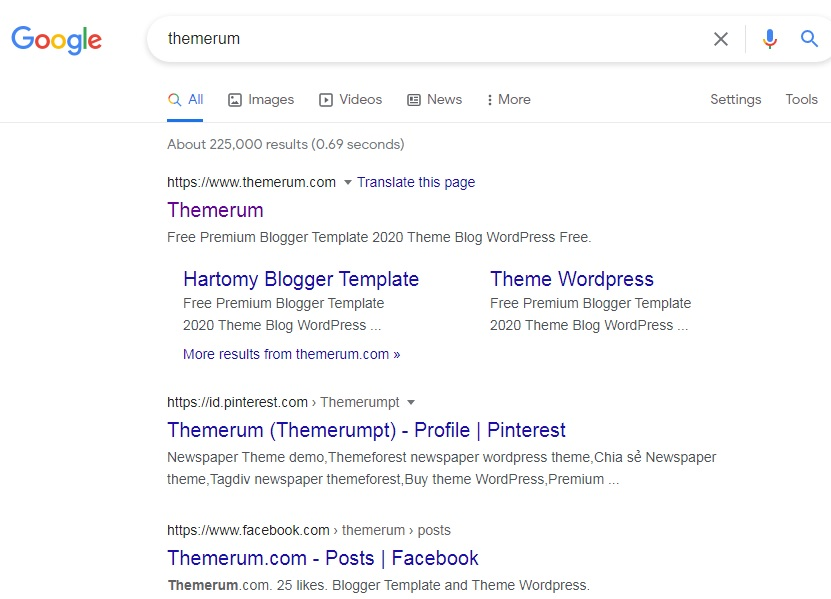 meta tag themerum.com