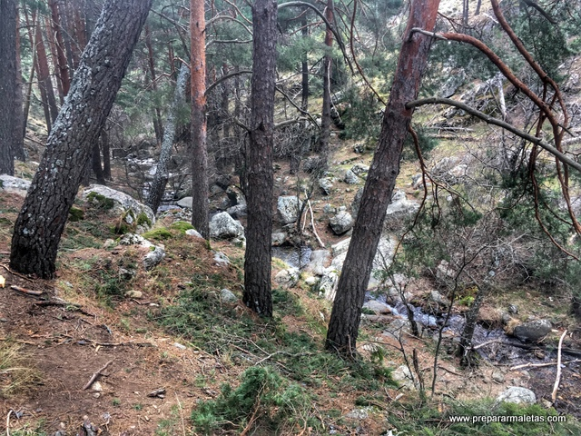 naturaleza alrededores de Madrid