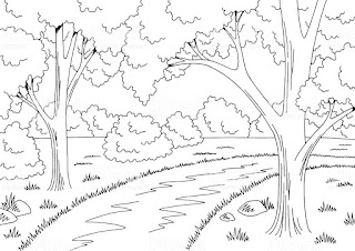 Desenhos de floresta para colorir
